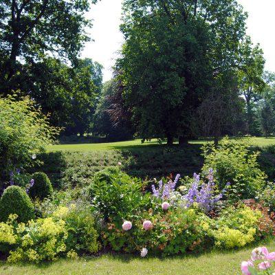 Sommerblüte am Teich des Rittergutes Remeringhausen