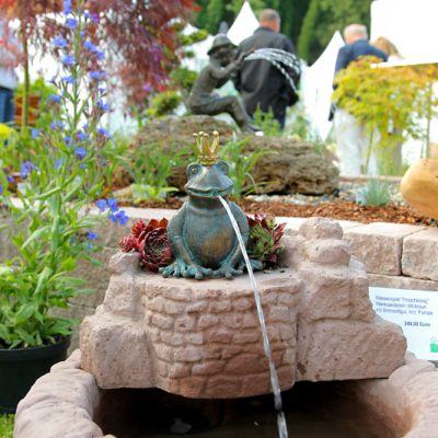 Hardenberg Froschkönig Brunnen