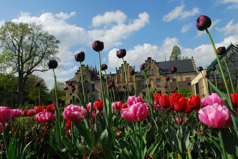 Ippenburger Frühlingsfestival